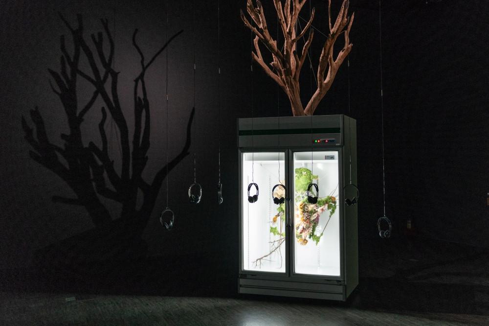 音樂結合藝術!!方序中「查無此人-小花計畫展」亮相台北當代藝術館