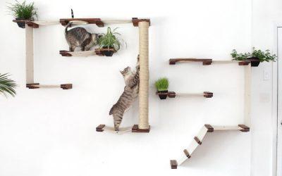 用極簡模組幫你家貓主子打造完美生活空間!