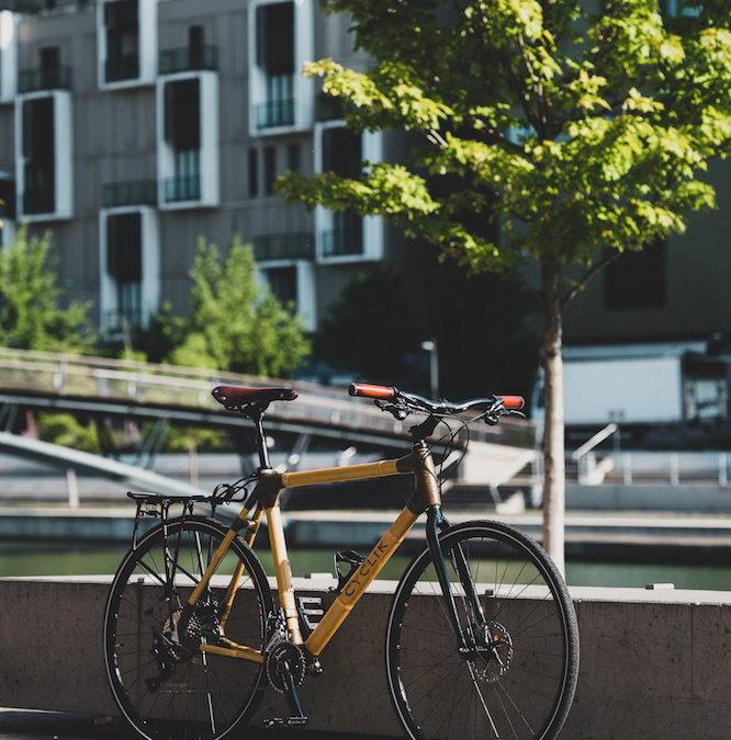 騎出不同的生活方式-法國 Cyclik 竹製自行車