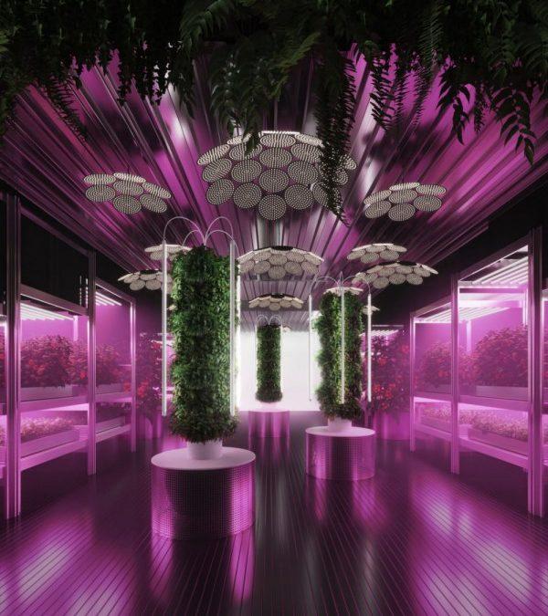 一座可以拯救世界的花園?IKEA再度攜手Tom Dixon 發揚城市農業的永續概念