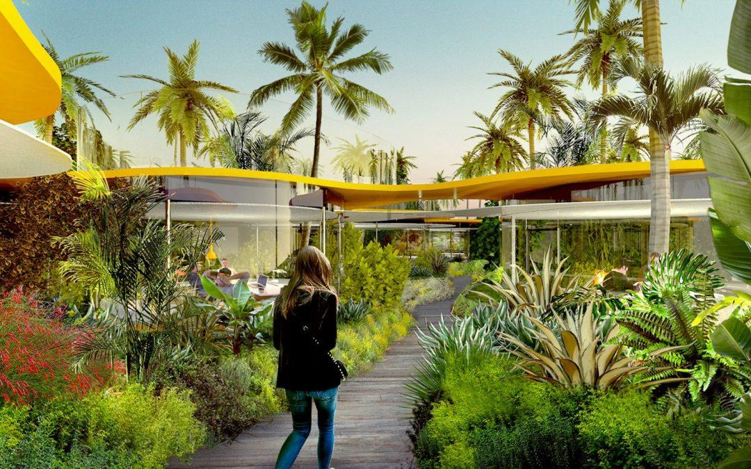 綠色植栽與自然光線交織成的烏托邦 ─ 洛杉磯共享辦公室!