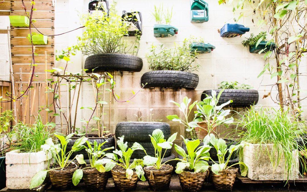 【自耕學】在陽台打造自己的居家菜園