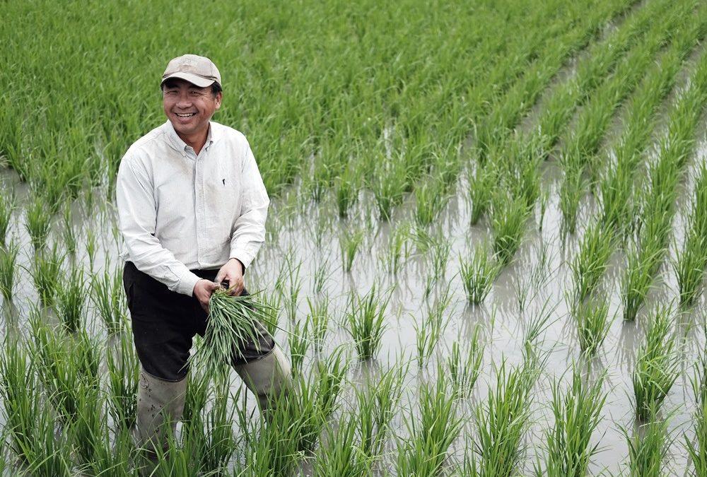 【看人物】楊文全:友善耕作,翻轉台灣的農業未來